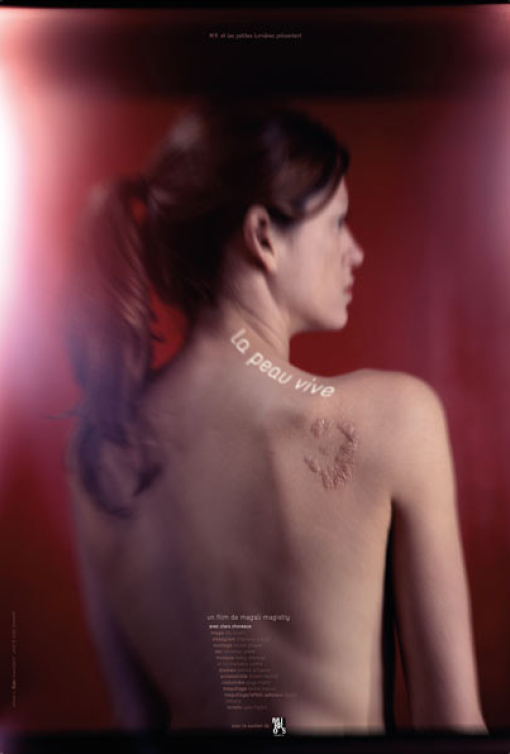 la-peau-vive_poster